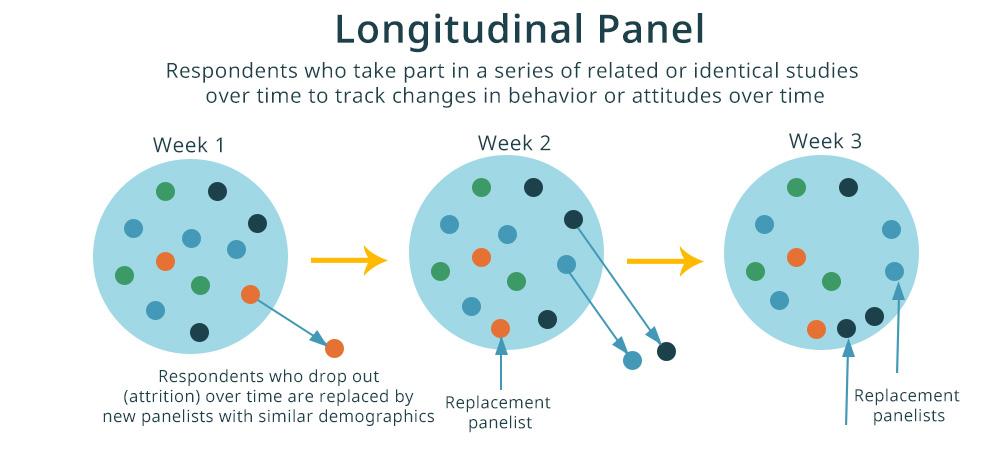 longitudinal panel research